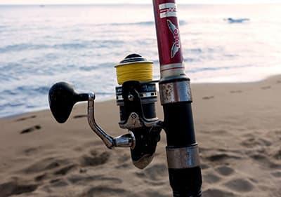 Alles over vissen in Ligurië – vissen aan de kust, vanaf een boot en cursussen om te leren vissen!