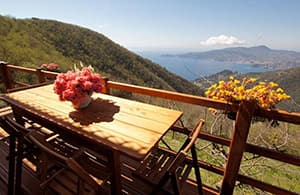 Holiday home with a dog and for the whole family in a quiet location in Liguria