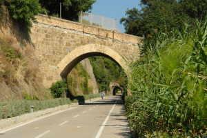 Cicli Bosco Luca Fietsverhuur in Ligurië