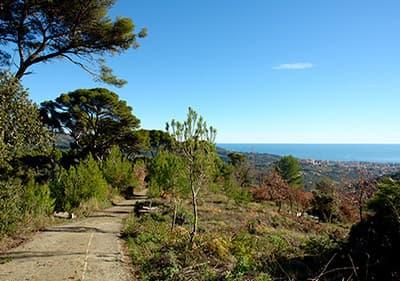 Uitzicht op verbazingwekkende Ligurische natur van wandelaars perspectief