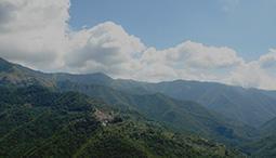 Het milde klimaat trekt het hele jaar door vakantiegangers aan in Ligurië