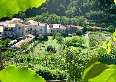 Wijnbouwers in Feglino, Ligurië