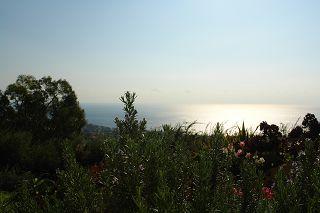 flora in Ligurië