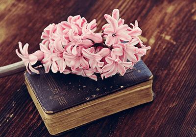 Boek op een tafel met een bloem op de top