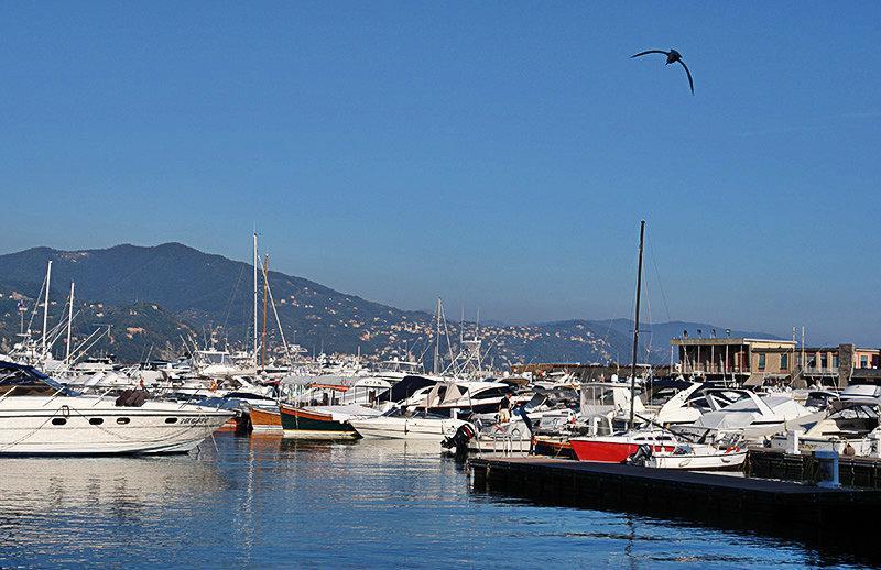 Een haven in Santa Margherita Ligure