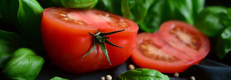 Tomaten en basilicum
