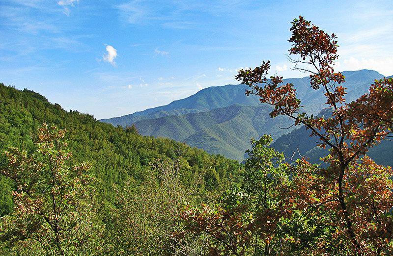 Een mening van een berg naar het dorp Molini di Triora